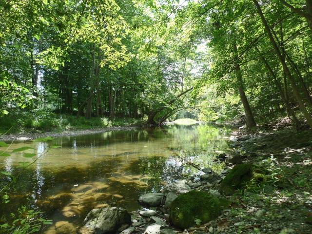 14_River3